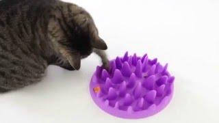 Northmate Catch Миска игрушка интерактивная для кошек petonly.ru