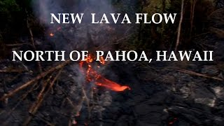 12/06/2014 -- Helicopter Aerial view of the new Hawaii lava flow breakout (Puna flow / Pahoa, HI)