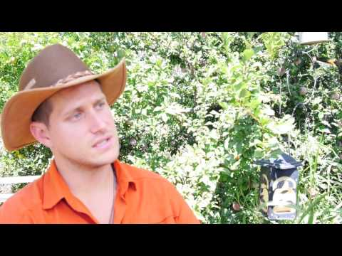 The Hands Free Garden Using Permaculture/Hugelkultur Gardening with Nathan Crane