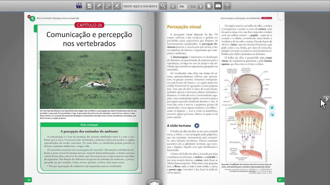 De medio pdf livro portugues ensino