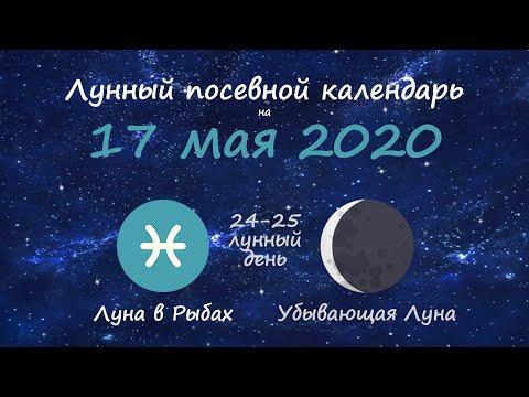 [17 мая 2020] Лунный посевной календарь огородника-садовода