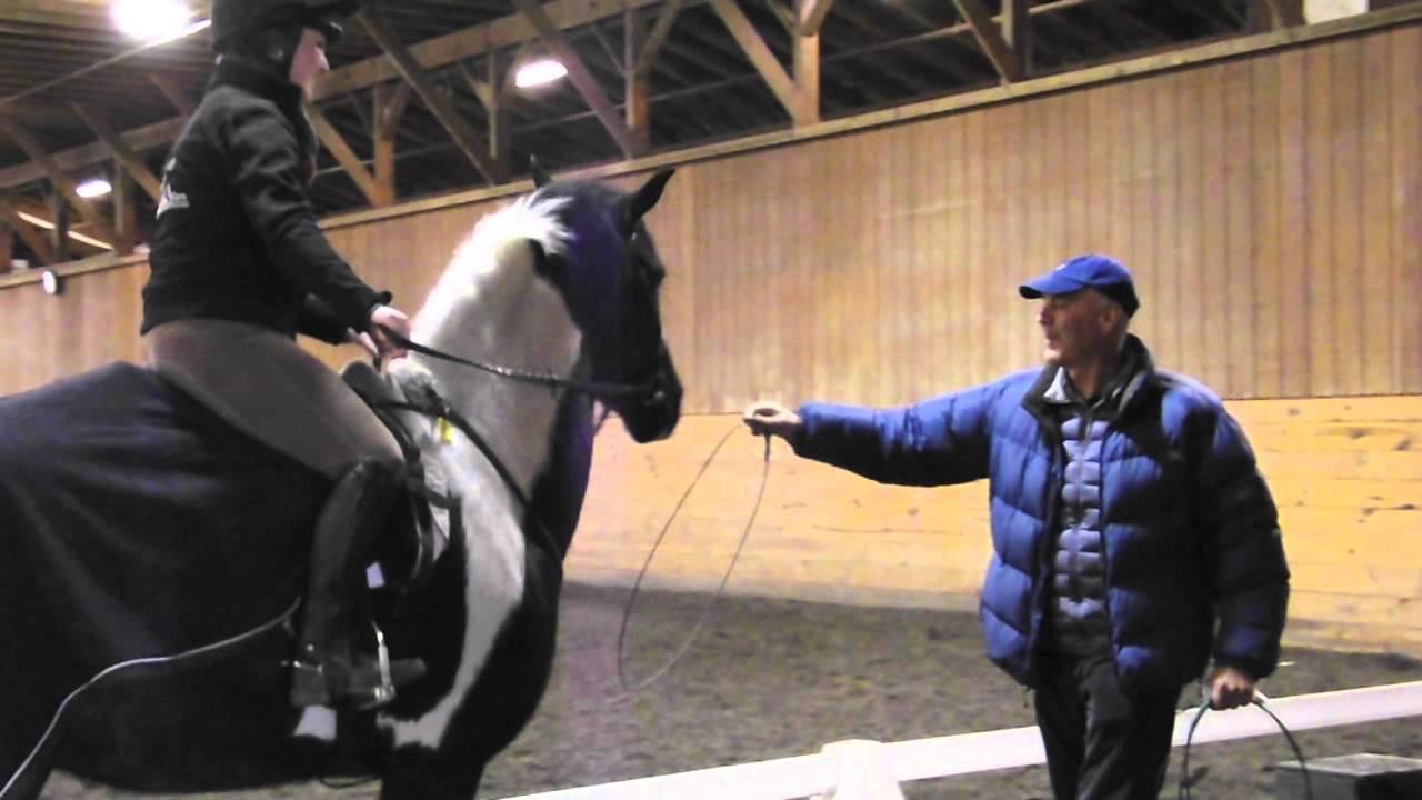 Delaware Valley College Equestrian Center Youtube