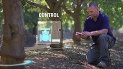 NetBeat™ - The First Irrigation System with a Brain