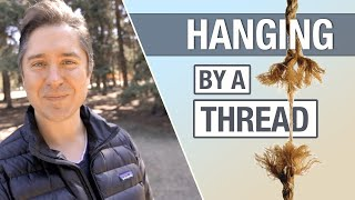 Hanging By A Thread (Catholic)