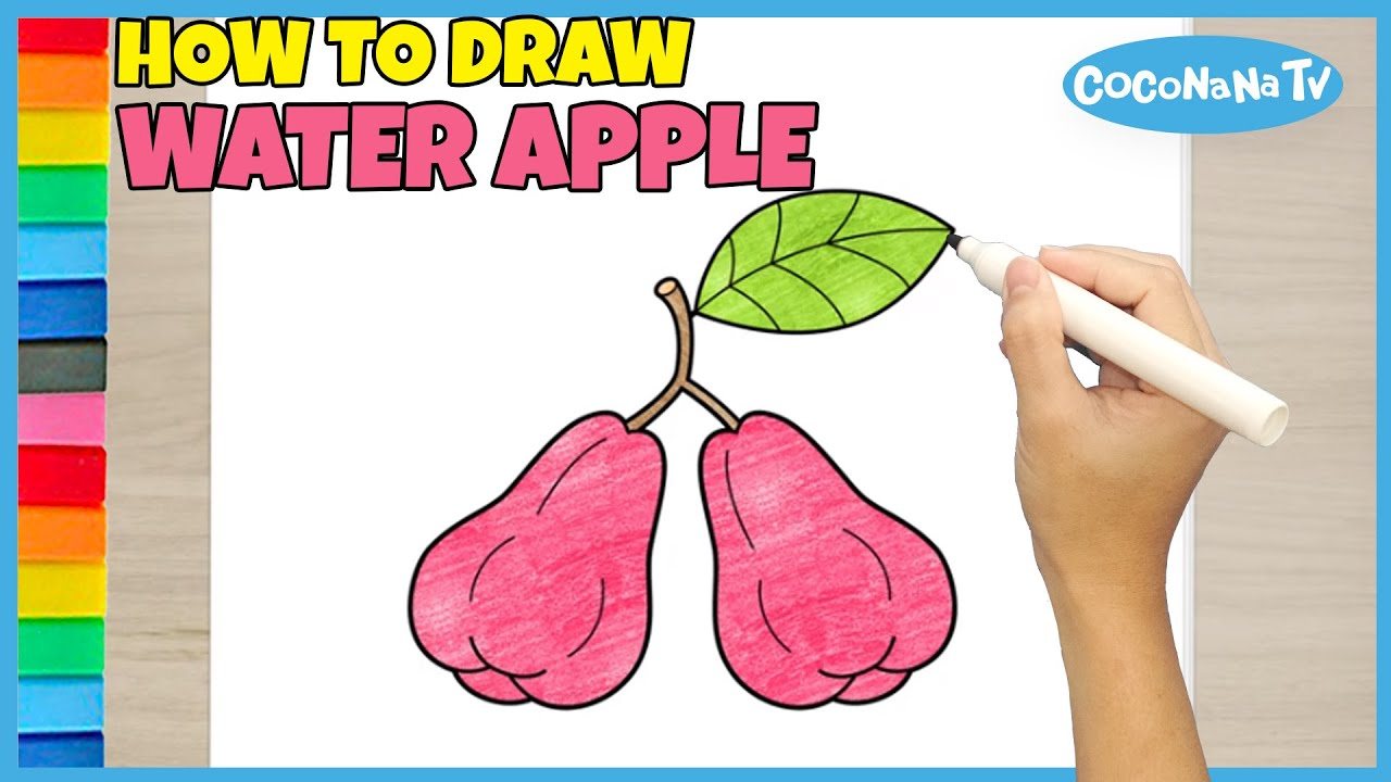 WATER APPLE Jambu Air How To Draw And Color Coconana