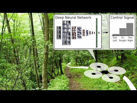Quadcopter Navigation in the Forest using Deep Neural Networ