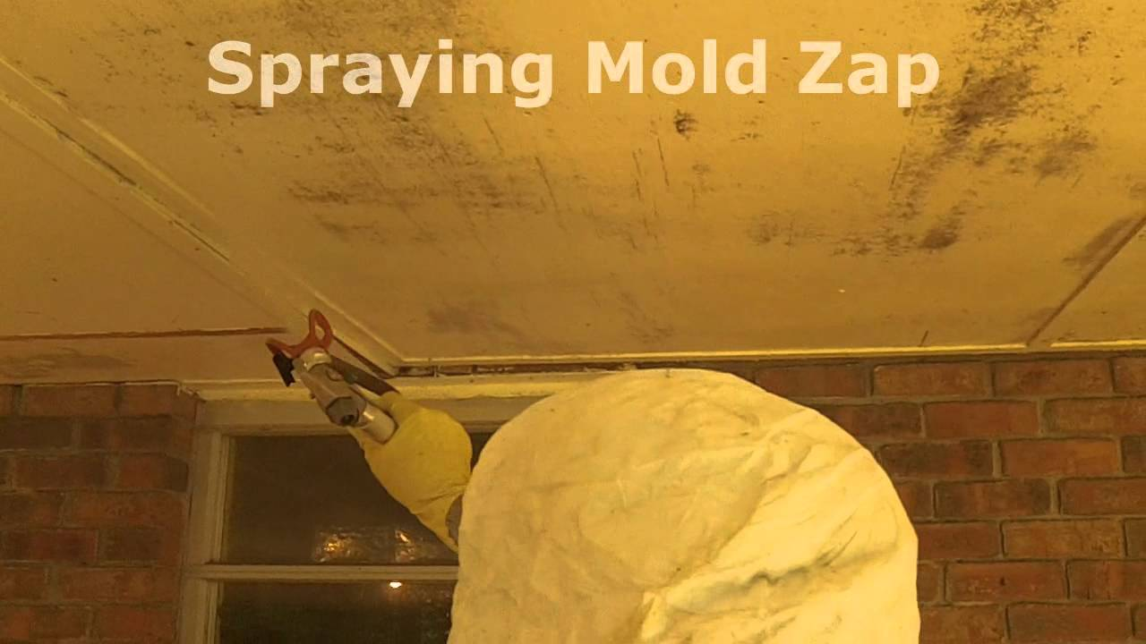 How To Remove Porch Ceiling Mold wmv
