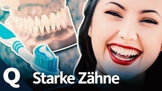 Gesunde Zähne: Darum sind sie so wichtig für uns | Quarks