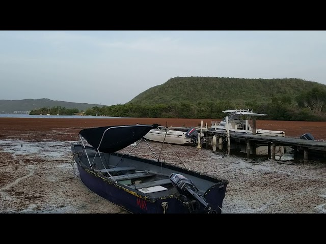 Muelle Ensenada Guánica