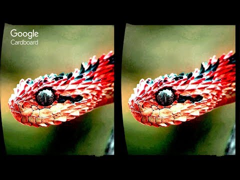 3D Extreme Effects 02 - Aquarium + Snake  ...
