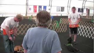 Mutual Enrichment-veterans Training Shelter Dogs (mu Collaborates With Mars Petcare).wmv
