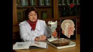 видео Боли в области сердца: причины, симптомы. Почему болит сердце?