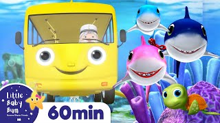 Wheels on The Bus Underwater | +More Nursery Rhymes & Kids Songs | ABCs and 123s | Little Baby Bum