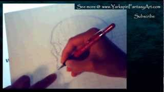Anatomy Study  - SKULL Anatomy Study Clean Up Drawing