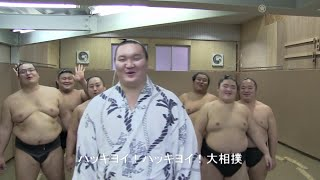 Les sumotoris chantent「Hakkiyoi」🎶
