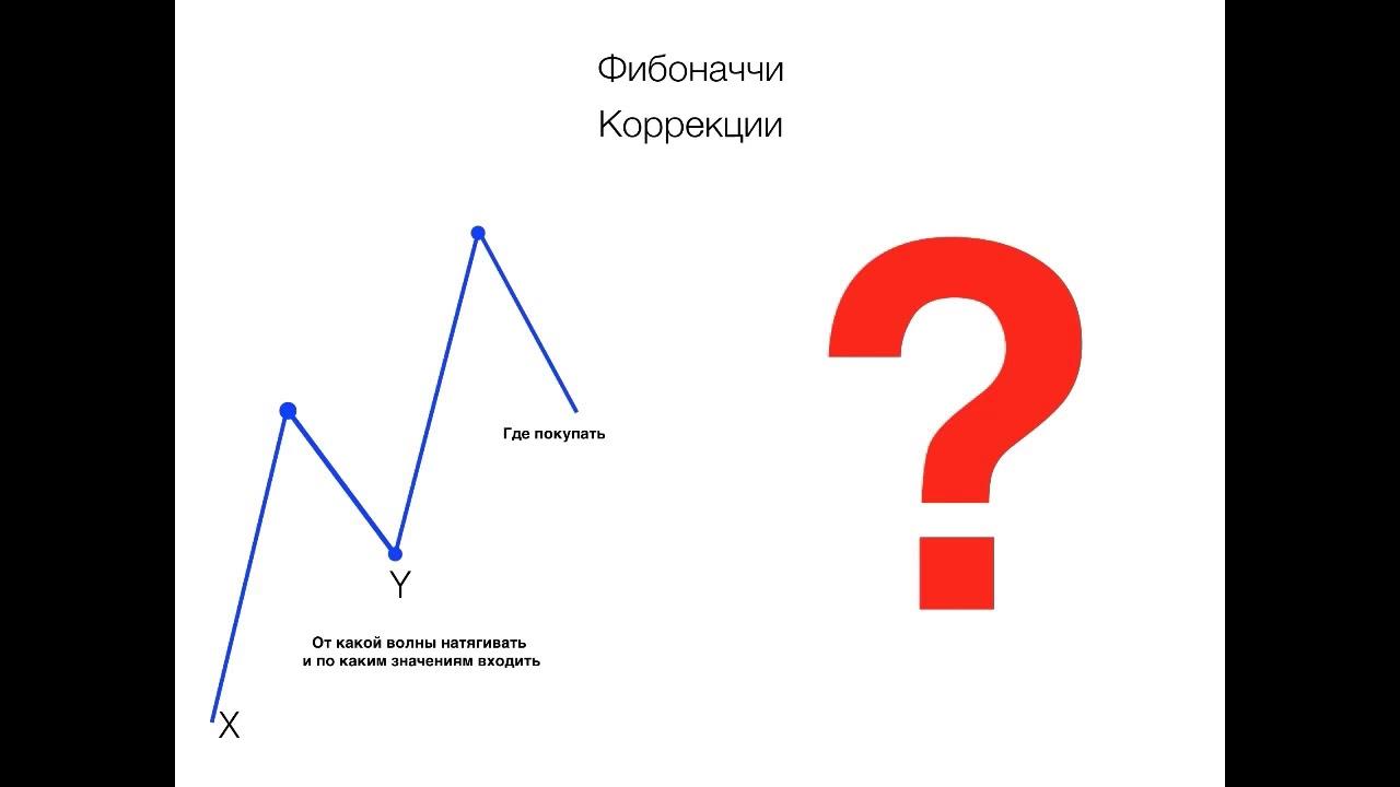 Задача которую решил фибоначчи биология решение задач генетики