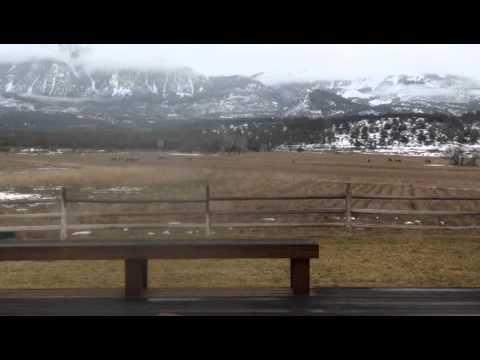 Elk Vista Ranch - Paonia Colorado
