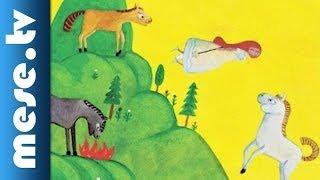 Anga Mária: Az aranypatájú kiscsikó - gyermekkönyv ajánló (x)