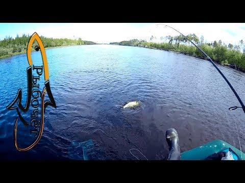 Сплав по таёжной реке Пим Full HD 🎣Сплав на одноместной лодке в 20 км. 🎣и не много рыбалки