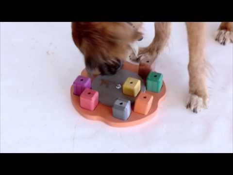 """Gioco di attivazione mentale """"Quadrato"""" di Smart Dog"""