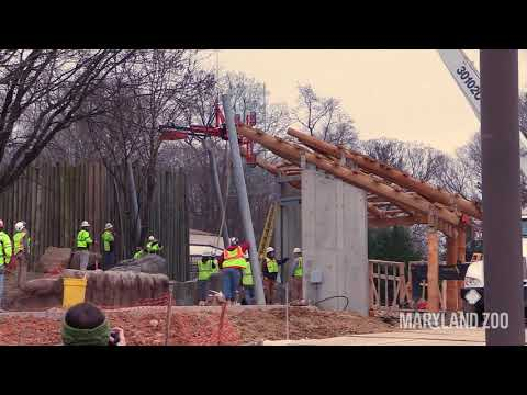 African Journey Construction Update: 1/25/19