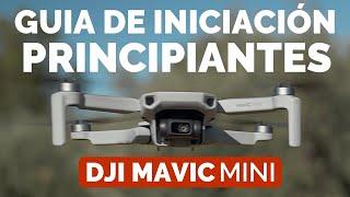 DJI MAVIC MINI - GUIA INICIACIÓN PRINCIPIANTES en ESPAÑOL - DJI FLY APP EXPLICADA