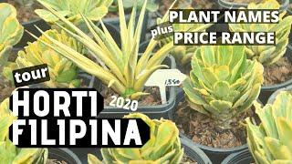 Horti Filipina Tour 2020 + Plant Names \u0026 Price Range | Plant Haul Philippines | EP 18