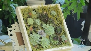 Succulent Hanging Wall Designs Floristry Tutorial