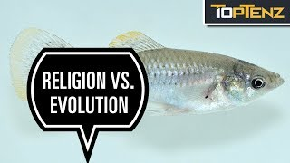 10 Ways Living Creatures Have Evolved in Modern Times