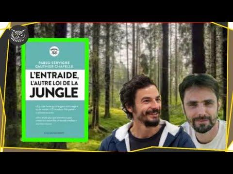 #BalanceTonPavé 2 : L'entraide, l'autre loi de la jungle  | Conseil Lecture