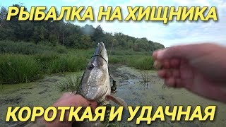 Зачётная щука.Клёвая рыбалка