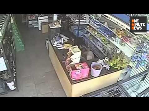 Thief Shoves $1,400 Pomeranian Down His Pants