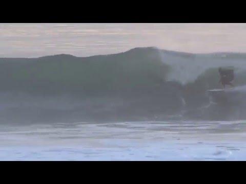 Santa Barbara Morning Glory
