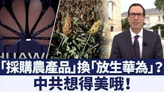 「華為不是美中貿易談判重點」中共買農產品換不到放生華為|新唐人亞太電視|20190721