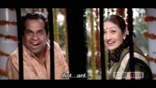 Repeat youtube video Simhadri Movie    Jr.Ntr & Ankitha Love Scene    Jr NTR, Bhoomika, Ankitha