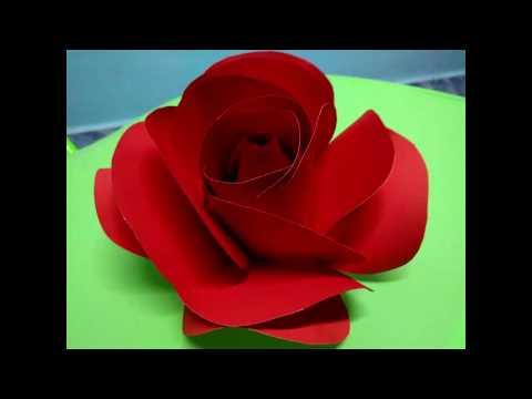 Paper Rose - ดอกกุหลาบกระดาษ