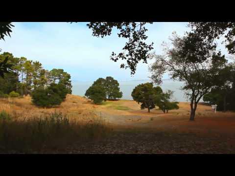 Rare Beachfront Property, Tiburon California