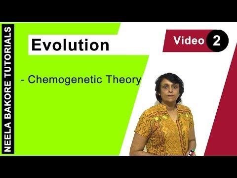 Evolution - Chemogenetic Theory
