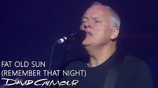 David Gilmour - Fat Old Sun (Remember That Night)