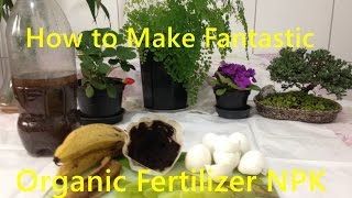 How to Make Organic Fertilizer for Your Vegetable Garden
