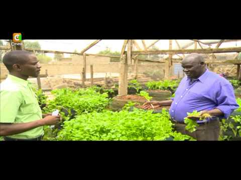 Smart Farm: Vertical