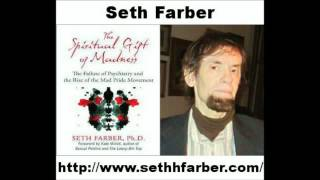 The Gift Of Spiritual Madness With Seth Farber