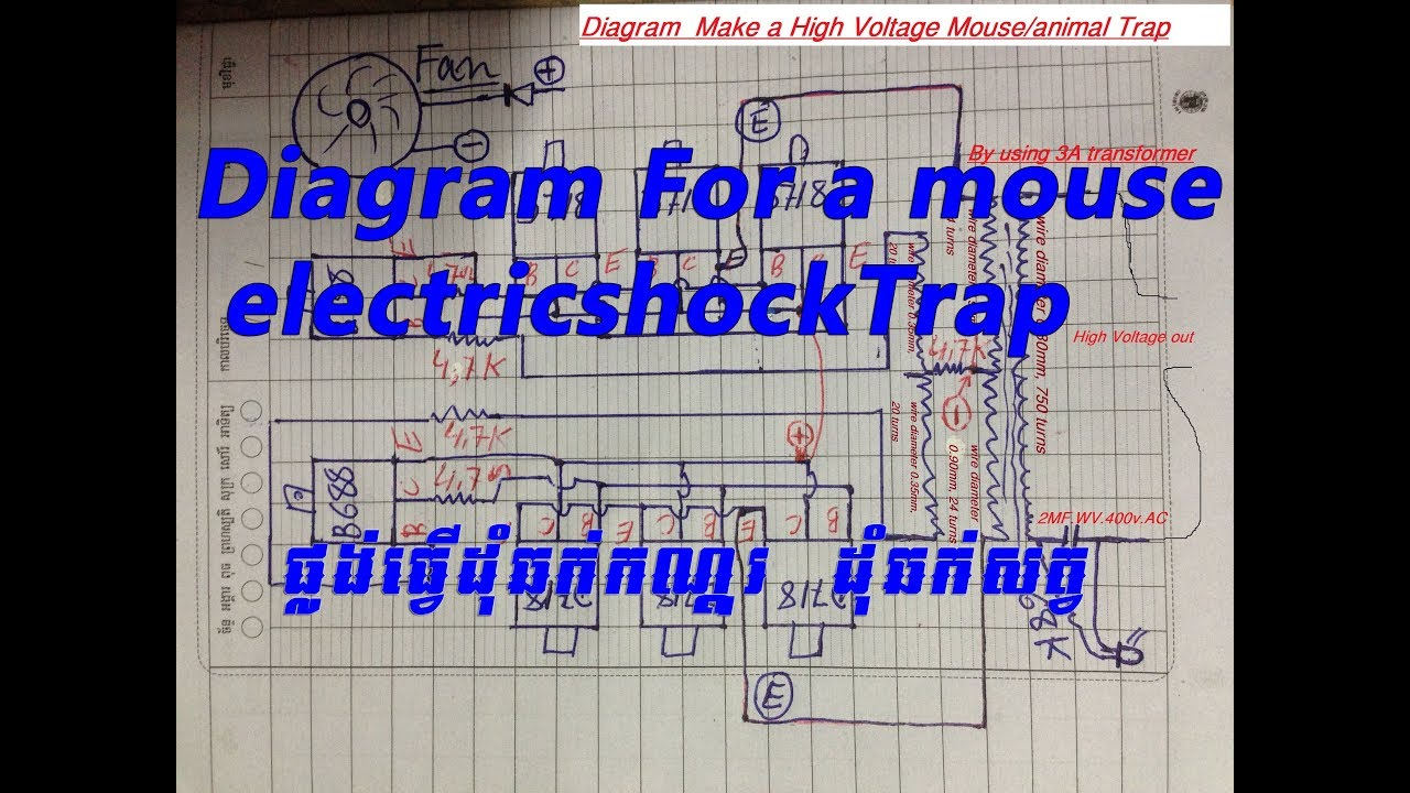 Diagram For A Mouse Electric Shock Trapan Animal Trap