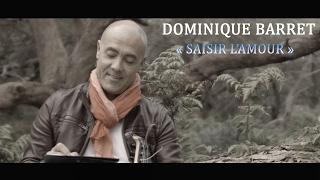 Dominique BARRET - SAISIR L