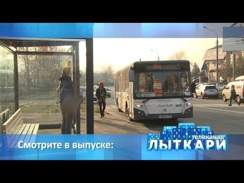Телевидение г.Лыткарино. Выпуск 10.11.2018