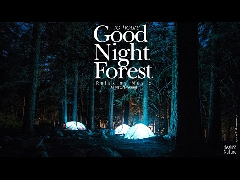 Night time Forest Sounds 10 Hours - Frog ,Cricket Sound for Relaxation, Yoga,Study,Sleep,Focus