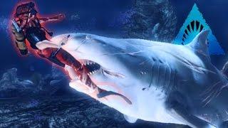 BULL SHARK! - Most Aggressive Shark! - Depth   Ep5 HD