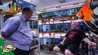 Angelfish Breeding for Profit with Master Tropical Fish Breeder Dean