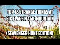 Six Flags Magic Mountain Scavenger Hunt (Top 12 List)