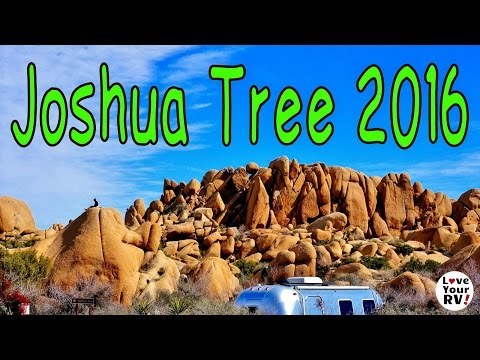 Our Visit to Joshua Tree National Park 2016